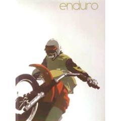 <I>' Enduro '  - Edouard Tremeau</I>