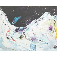 <I>' Skiing '  - Jan van Diemen</I>
