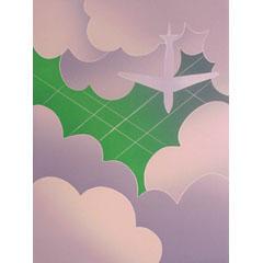<I>' Flying over '  - Thom de Jong</I>
