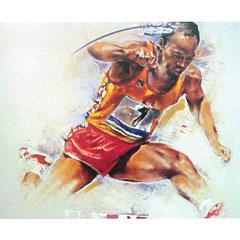 <I>' Hurdle 1 ' ingelijste poster <BR> Twan van de Vorstenbosch</I>